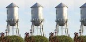 3.5-Watertowers ForCarol.com movie reviews